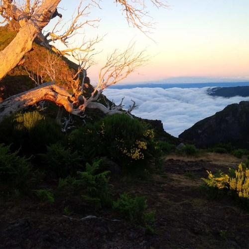 Aussicht unterhalb des Pico Ruivo auf Madeira.