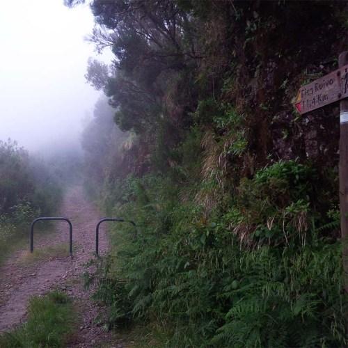 Den Encumeada-Pass auf Madeira erreicht!