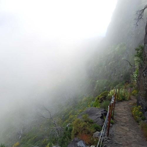 Trekkingpfad zum Pico Ruivo