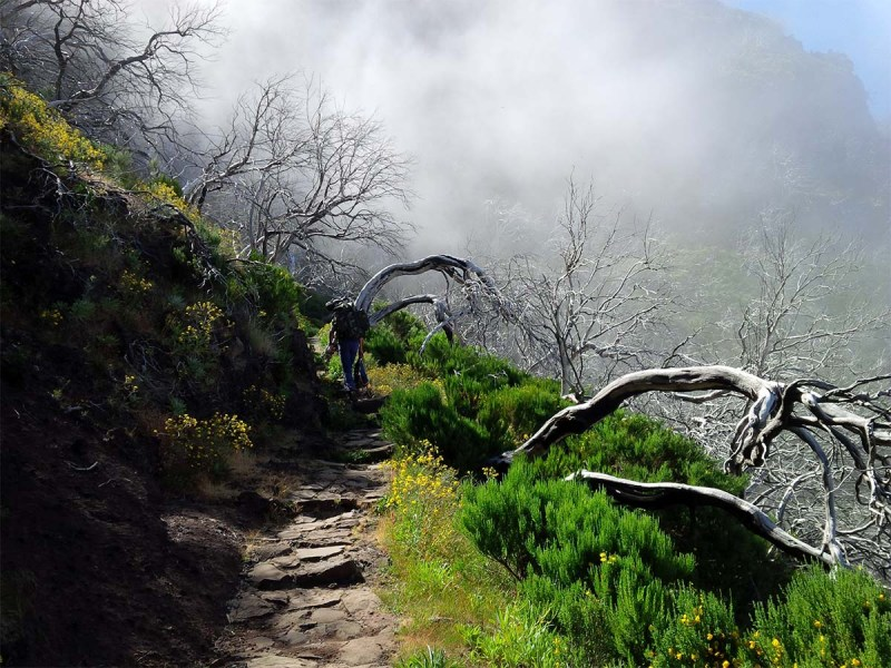 Auf dem weg zum Pico Ruivo.