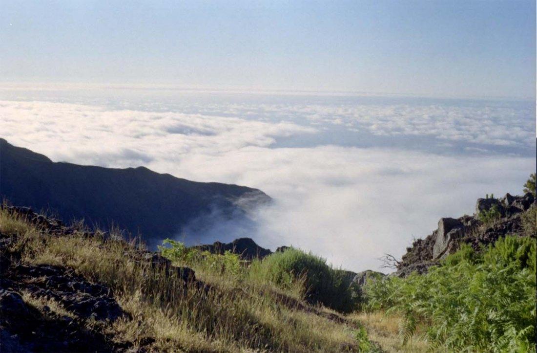Ausblick von einem Trekkingplatz auf Madeira.